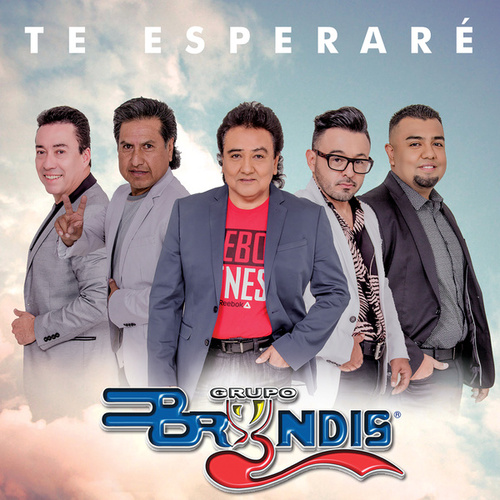 Te Esperaré (En Vivo) by Grupo Bryndis