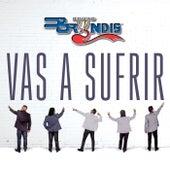 Vas A Sufrir (En Vivo) by Grupo Bryndis