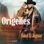 Orígenes - Mis Éxitos Con Norteño (Edición De Lujo) de Saul