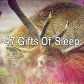 47 Gifts Of Sleep by Baby Sleep Sleep