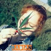 Radian by Dean RX