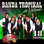 18 Exitos de La Banda Tropikal de Vallenar