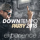 Downtempo Party 2018 Experience de Various Artists