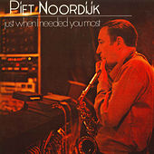 Just When I Needed You Most by Piet Noordijk