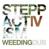 Steppactivism de Weeding Dub