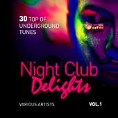 Night Club Delights (30 Top of Underground Tunes), Vol. 1 de Various Artists
