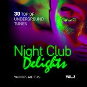 Night Club Delights (30 Top of Underground Tunes), Vol. 2 by Various Artists