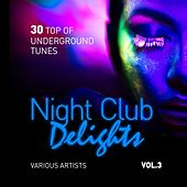 Night Club Delights (30 Top of Underground Tunes), Vol. 3 de Various Artists