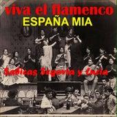 Viva el Flamenco España Mia de Various Artists