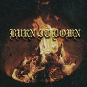 Burn It Down by Lifer