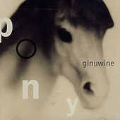 Pony by Ginuwine