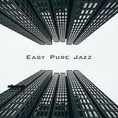 Easy Pure Jazz by The Jazz Instrumentals