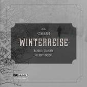 Schubert: Winterreise, Op. 89, D. 911 by Randall Scarlata