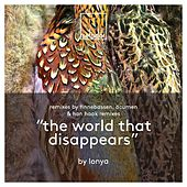 The World That Disappears by Lonya
