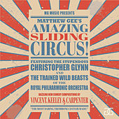 Matthew Gee's Amazing Sliding Circus by Matthew Gee