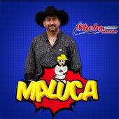Maluca by Sheba