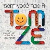Sem Você Não A von Tom Zé