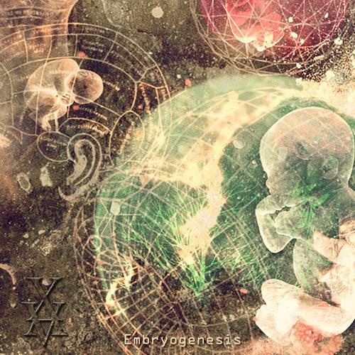 Embryogenesis by Xavier Boscher