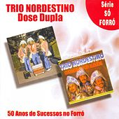 BRAZIL Trio Nordestino: 50 Anos de Sucessos no Forro von Trio Nordestino