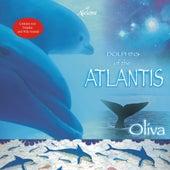 Dolphins of the Atlantis de Oliva