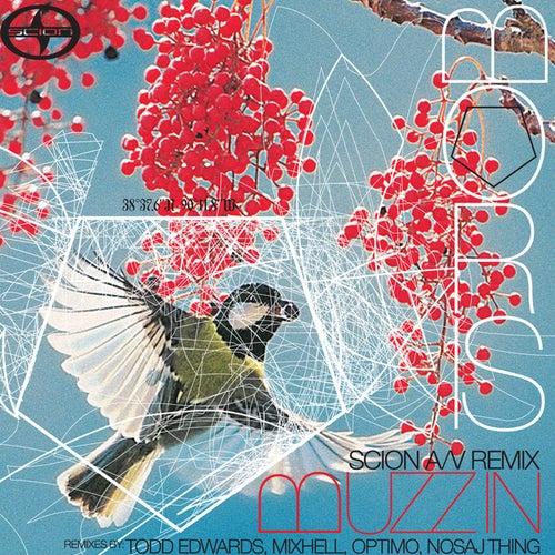 Scion A/V Remix Project: Boris by Boris