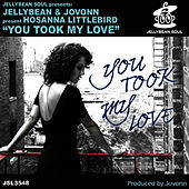You Took My Love by Jellybean
