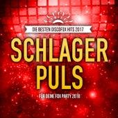 Schlager Puls - Die besten Discofox Hits 2017 für deine Fox Party 2018 by Various Artists