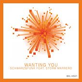 Wanting You by Schwarz and Funk