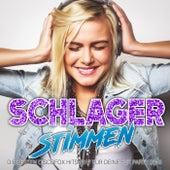Schlager Stimmen - Die besten Discofox Hits 2017 für deine Fox Party 2018 by Various Artists