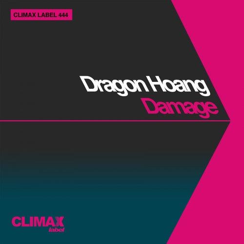 Damage by Dragon Hoang
