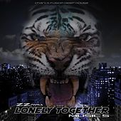 Lonely Together (Charts Fusion Deep House) by ZZanu
