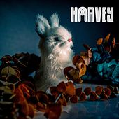 Animals by Harvey