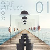 World of House, Vol. 1 by Various Artists