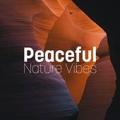 Peaceful Nature Vibes de Sounds Of Nature