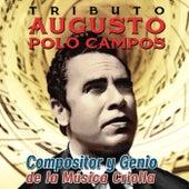 Tributo a Augusto Polo Campos. Compositor y Genio de la Música Criolla de Various Artists