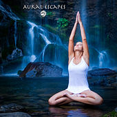Zen Waterfalls (White Noise for Sleeping, Relaxing and Meditation) by Aural Escapes