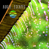 Zen Rains by Aural Escapes