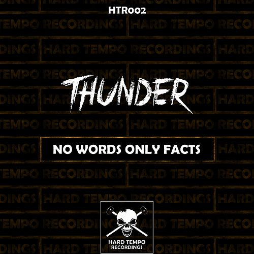 No Words Only Facts by Thunder