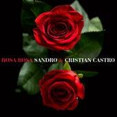 Rosa Rosa de Sandro