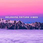 Relaxing Nature Vibes de Sounds Of Nature