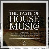 The Taste of House Music, Vol. 23 by Various Artists