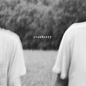 Cranberry by Hovvdy