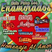 Solo Para Los Enamorados Homenaje Al Amor, Vol. 5 by Various Artists
