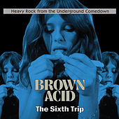Brown Acid - The Sixth Trip de Various Artists