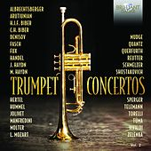 Trumpet Concertos, Vol. 2 by Various Artists