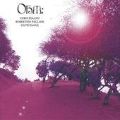Ohm by Ohm