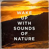 Wake up with sounds of nature de Various Artists