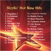 Sizzlin' Hot New Hits de Various Artists