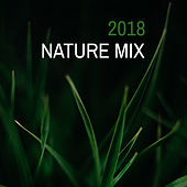 2018 Nature Mix by Nature Sounds (1)