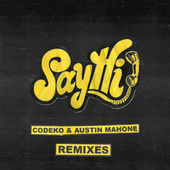Say Hi Remixes by Austin Mahone